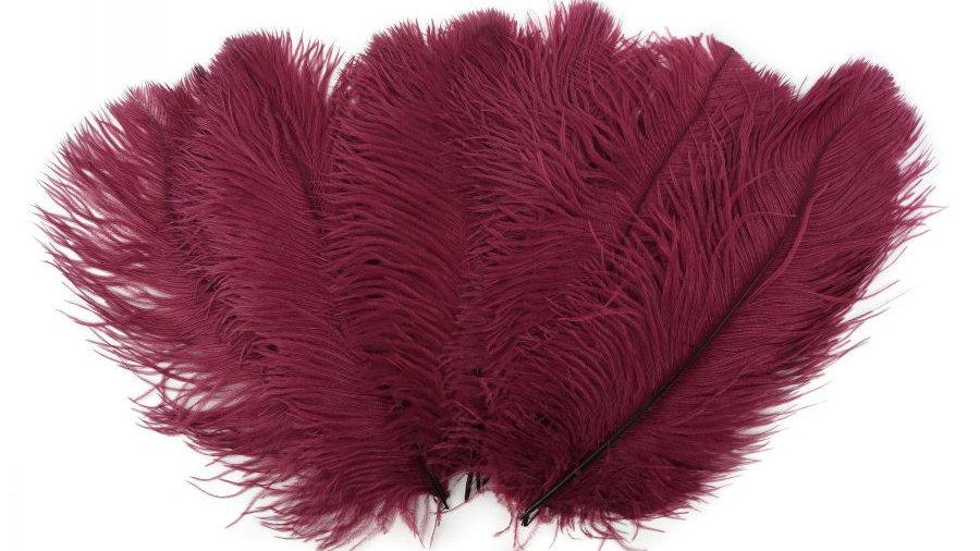 Bulk Ostrich Feathers