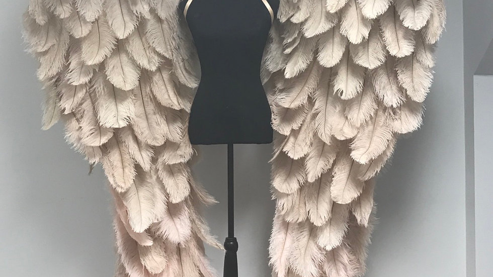 Deluxe size Ombre Couture Angel Wings