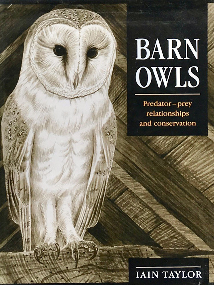 The Barn Owl, I.Taylor 1983.jpg