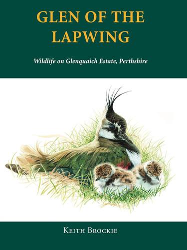 Glen of the Lapwing.jpg