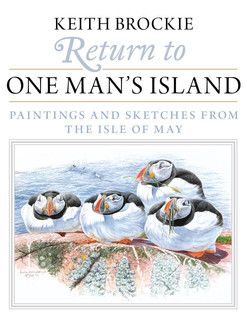 Return to One Man's Island.jpg