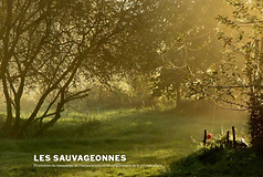 Les sauvageonnes site.png