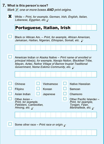 2020_Census_question_#7_MPC_Port_Ital_Ir