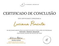 Luciana Pimenta Certificado de Conclusao