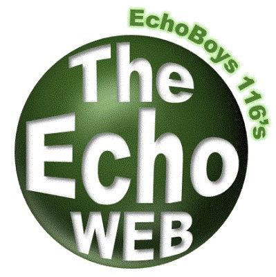 teh_echo_web_logo