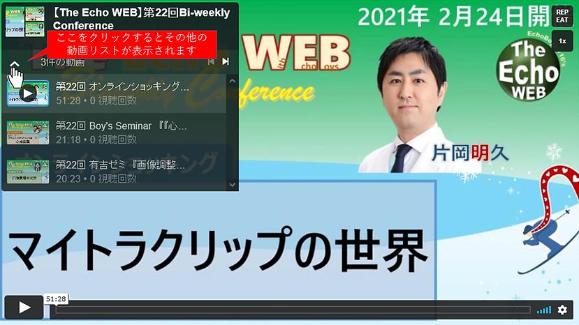動画の見方.png