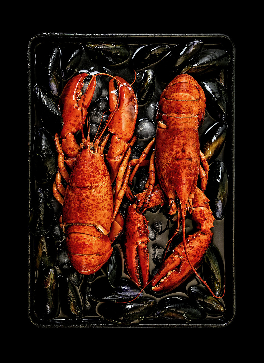 Lobsters and Mussels