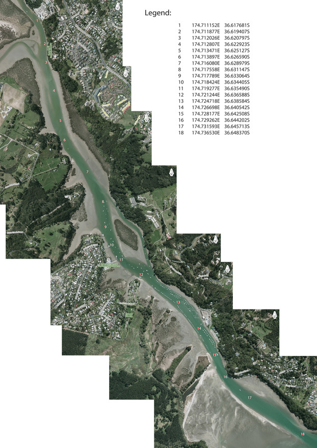 weiti river track.jpg