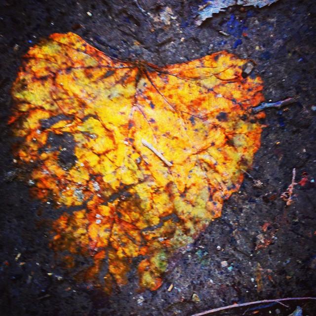 River Trail Heart