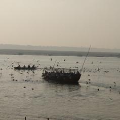 Ganga Mornings.jpg
