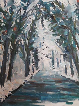""""""" La forêt de St Germain en Laye """""""