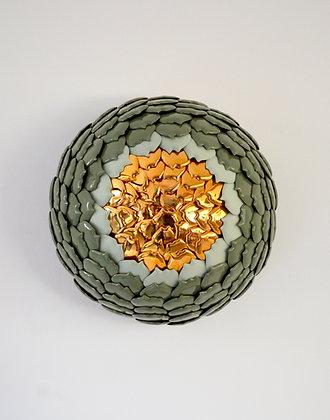 Echinacea Green Jewel 1, Juliette clovis