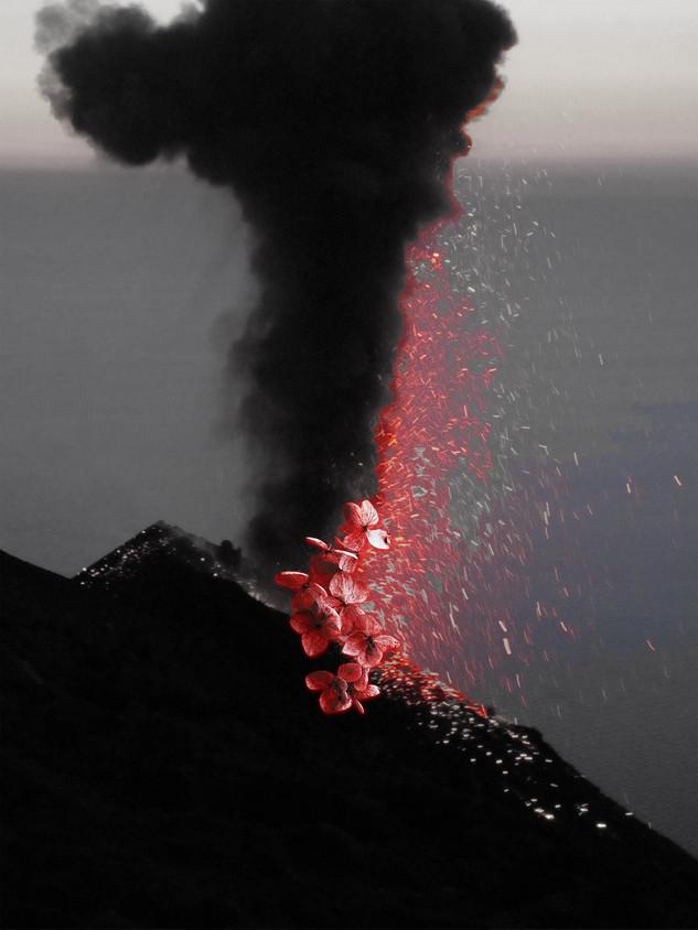 Annemarie_Arbefeuille_eruption-vegetale.