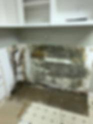 mold2.jpg