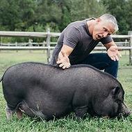 Tom Rushton  and Oliver - Piggie Smalls.