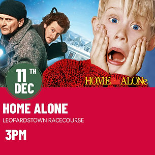 Home Alone 1 2021.jpeg