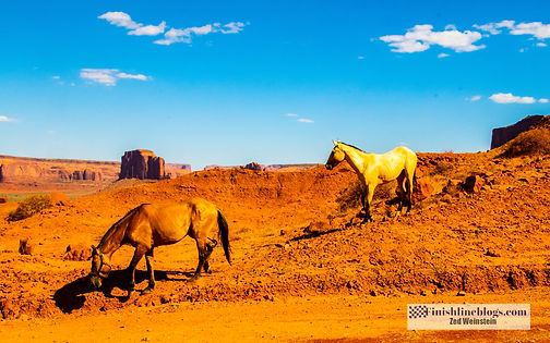 Grand Canyon-Monument Valley-137.jpg