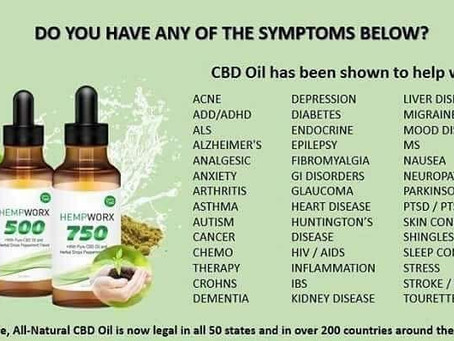 Elevate Your Wellness with CBD Oil