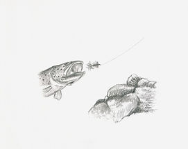 drawing-flies-charcoal.jpg
