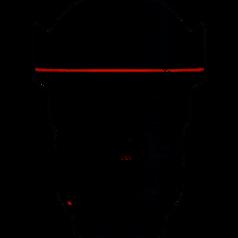 Canon EF 11-24mm f4 L Lens
