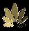 Browngradeint icon transparent.png