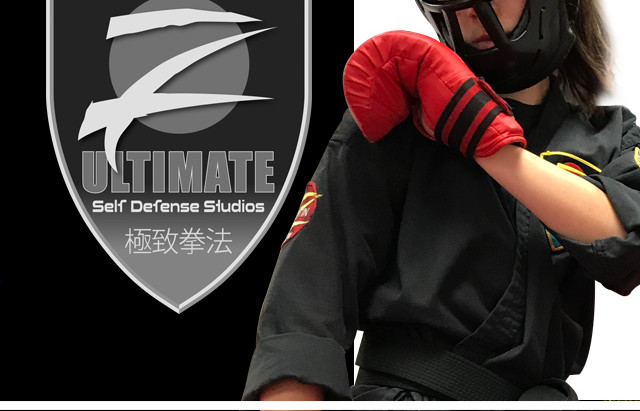 Z Ultimate Martial Arts Tournaments, an Unforgettable Experience