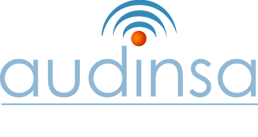 Copia de logo_audinsa_pantone 2.png