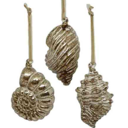 Shell Ornaments - Set of 3