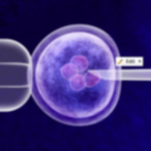 SB_2_CRISPR__Insta-13.jpg