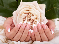 Hands with long artificial french manicured nails holding a beige rose flower_edited.jpg