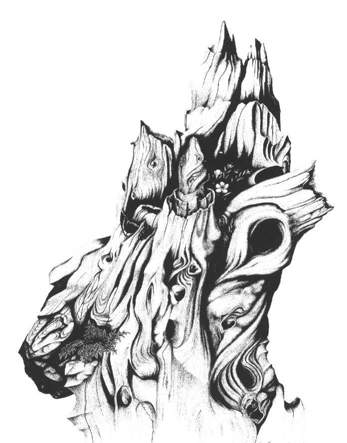 Kauri Knot