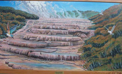 The Pink Terraces