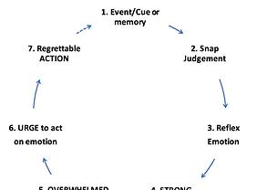 Distress Cycle.png