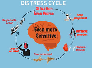 Distress Cycle animation screenshot.jpg