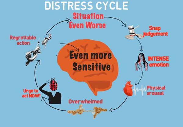 Distress Cycle animation screenshot.jpg
