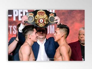Miguel Flores, professional boxer