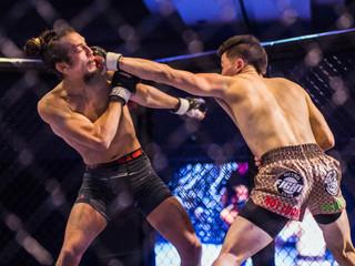 Fury Fighting Championship 27