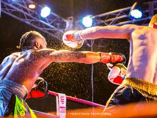 NEXT FIGHT UP VII