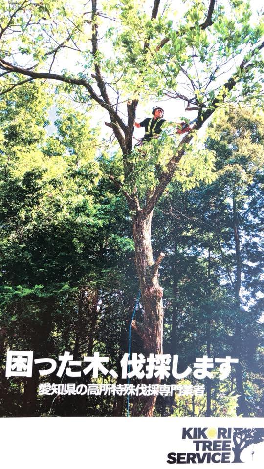 木こりツリーサービス