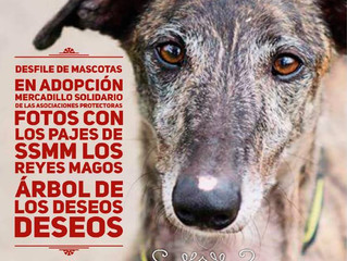 I Feria de la Adopción Responsable - Ciudad de Torrelavega