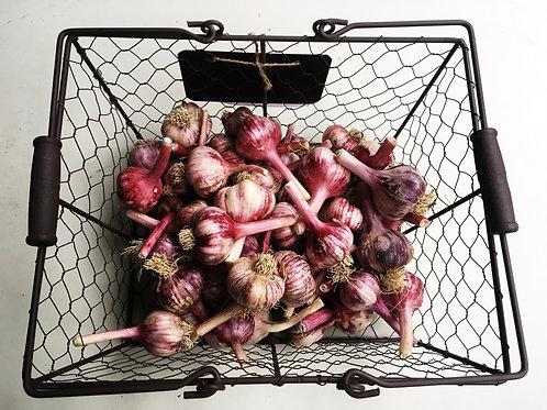 copy of Garlic- 1/4 lb