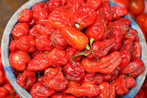 Scotch Bonnet Pepper (Ata Rodo)