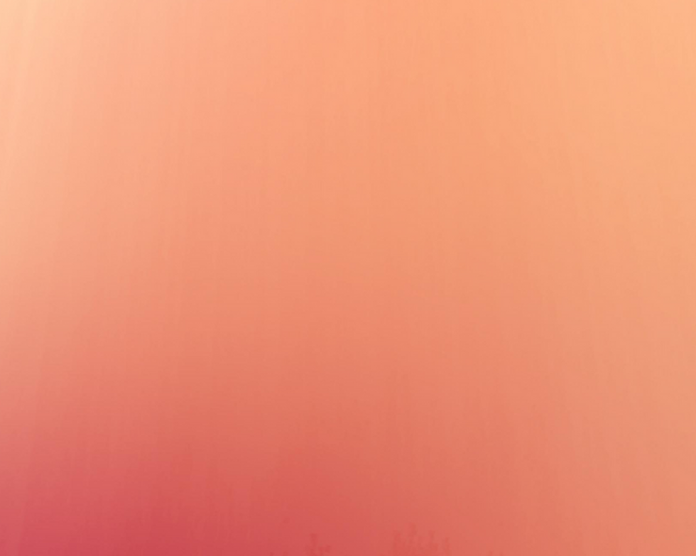 Untitled%20design-2_edited.png
