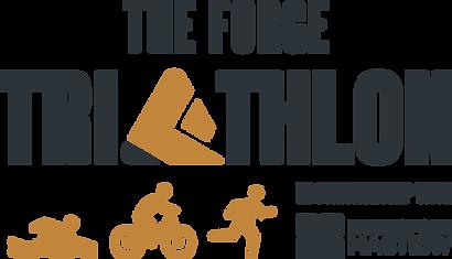 Triathlon Logo Gray Clay.png