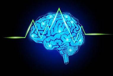 뇌 이미지.jpg