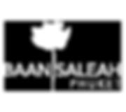 Baan_white_transp.png