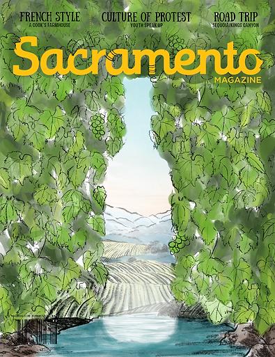 Natural wine cover sketch for Sacramento Magazine