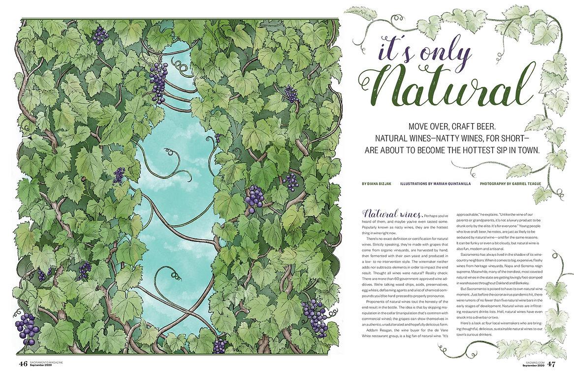 Natural wine Sac Mag Cover Spread Illust