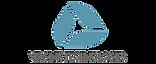 logo-virginis-technologies.png