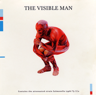 David Byrne:  The Visible Man (1997) - Christian Cassan Credits:  Drums Percussion Guitar